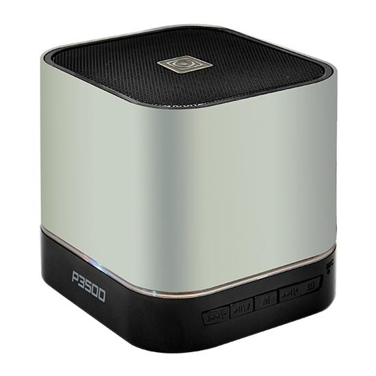 Audiobox P3500 10W Bluetooth Speaker With Multiple Input + FM Radio ( Silver )